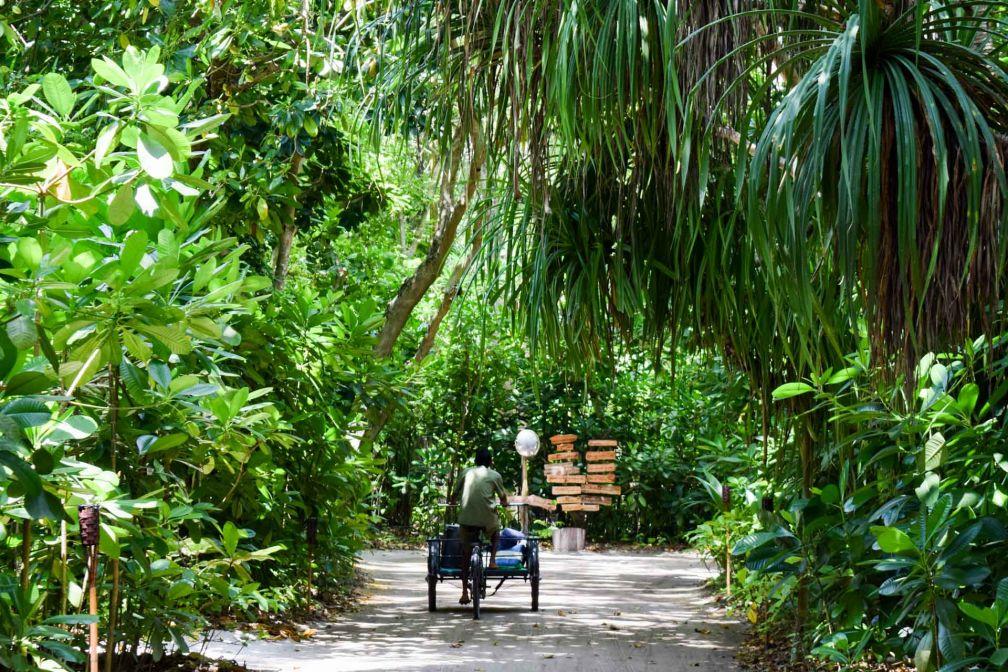 Sur l'île, le vélo (ou le tricycle pour le staff) est le moyen de transport de prédilection © YONDER.fr