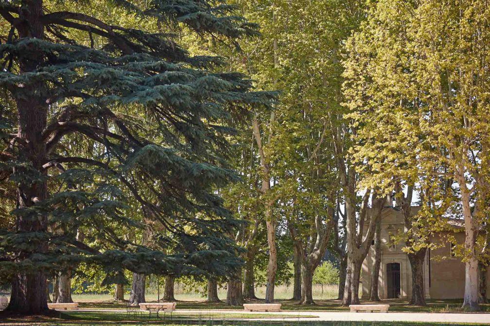Autour du château, un vaste parc avec ses allées et arbres majestueux © DR