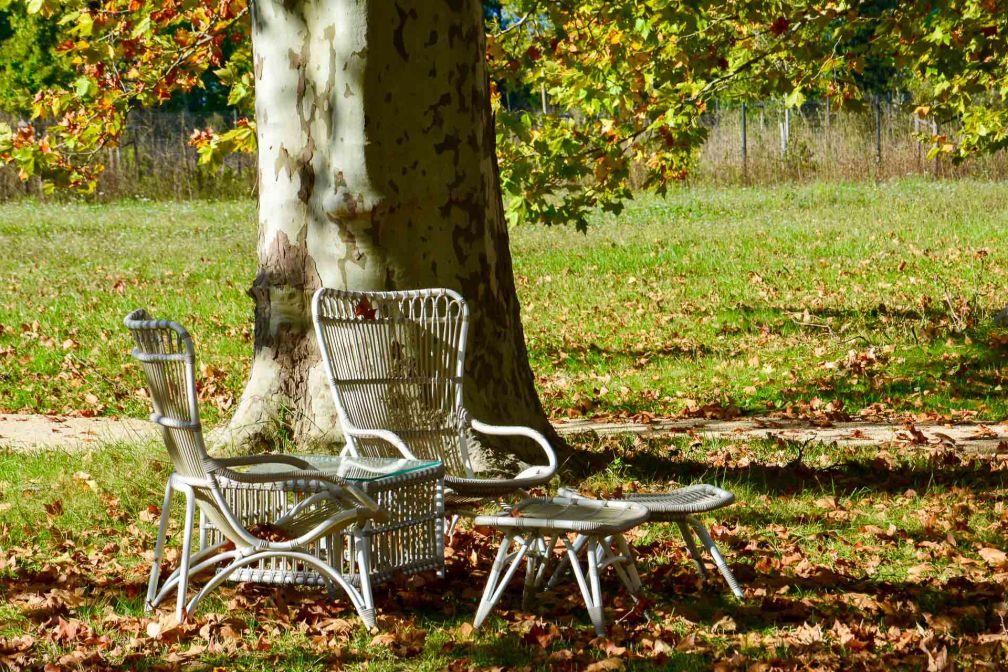 Dans le parc du Château de Fonscolombe © Emmanuel Laveran