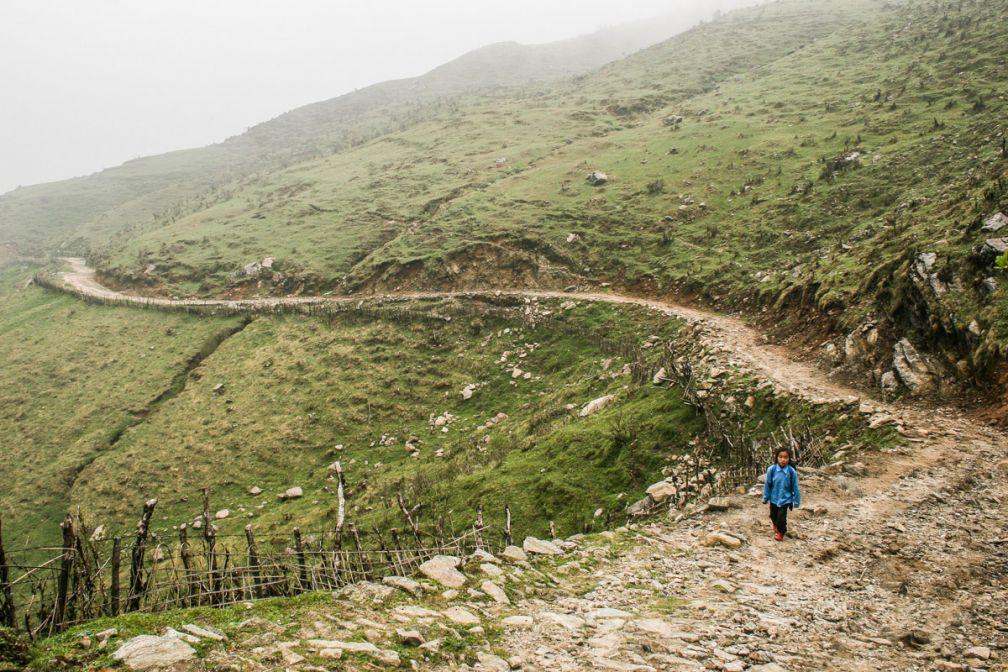 Une petite fille fait le trajet entre son école et son village dans le Parc National de Singalila.