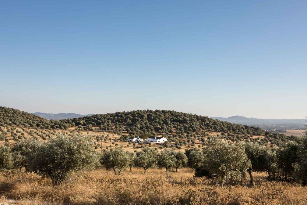 Vue sur la campagne dans l'Alentejo, vaste région rurale du Portugal © DR