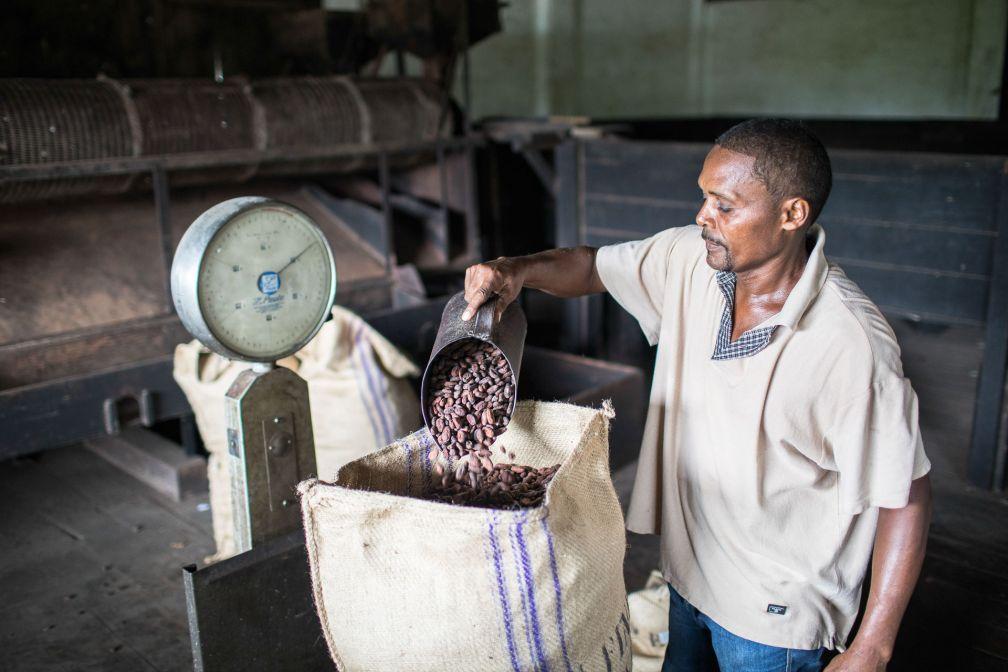 Roça Diogo Vaz, l'une des principales plantation de cacao de Sao Tomé © DR