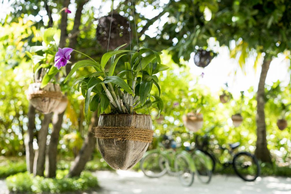 Anantara Kihavah Maldives Villas - Détails de décoration sur l'île © DR