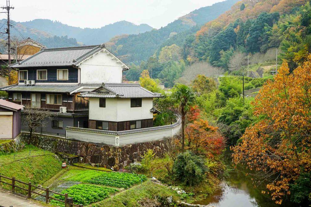 Dans la campagne autour d'Asuka © YONDER.fr