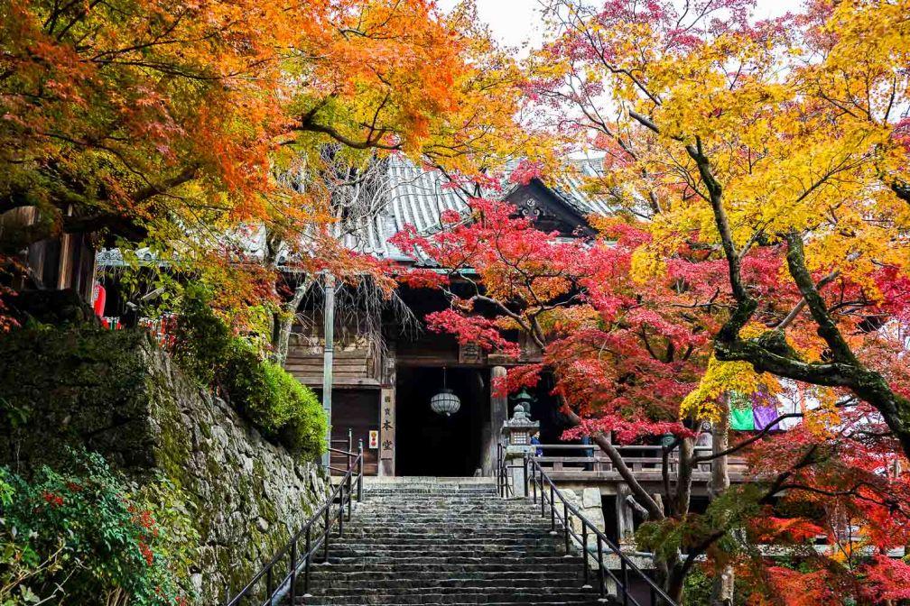 Le temple Hase-dera, à une heure de route de Nara, sublime dans son écrin automnal © YONDER.fr