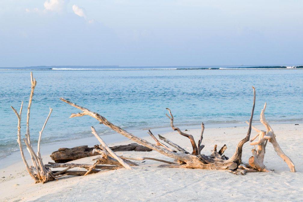 Au bord de la plage © YONDER.fr