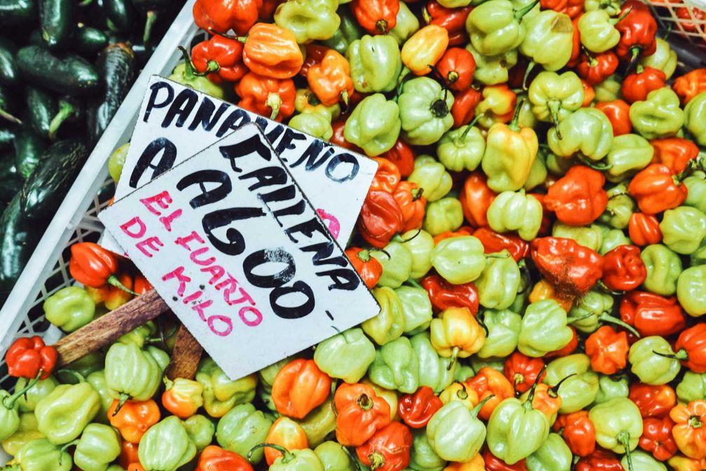 Au Mercado Central © Constance Lugger