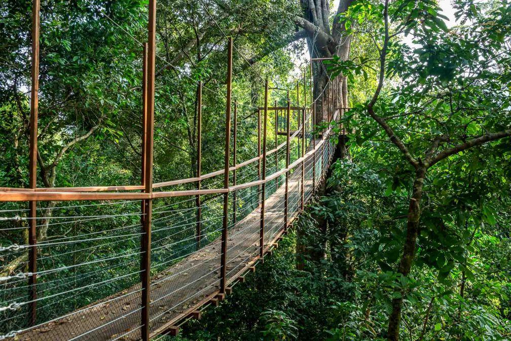 The Datai Langkawi - Un pont du Canopy Walk © DR