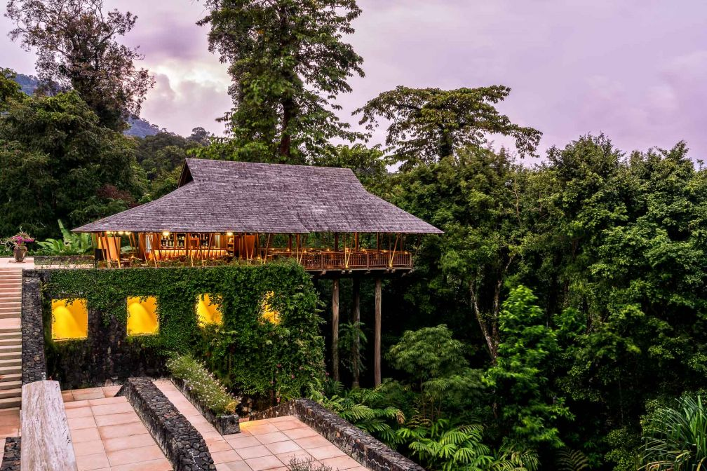 The Datai Langkawi est au cœur d'une biodiversité extraordinaire et sa forêt tropicale de 10 millions d'années abrite une faune et une flore extrêmement riches © DR