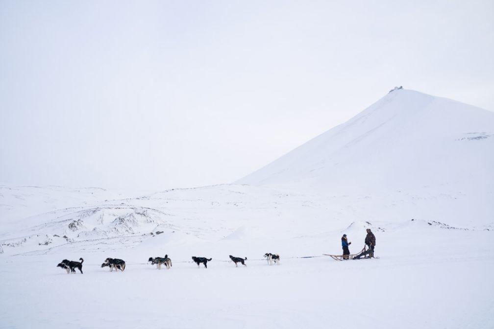 Excursion en traîneau à chiens dans Bolterdalen.