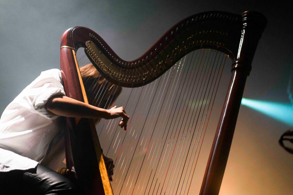 Une harpiste, parmi d'autres musiciens, accompagnait sur scène, David August au Melkweg © ADE