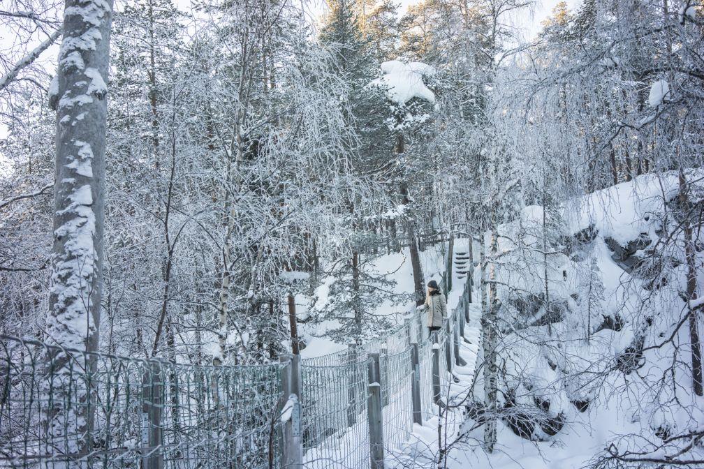 Dans le parc national d'Oulanka, à Myllykoski. Pas plus d'une personne à la fois sur la passerelle ! © YONDER.fr