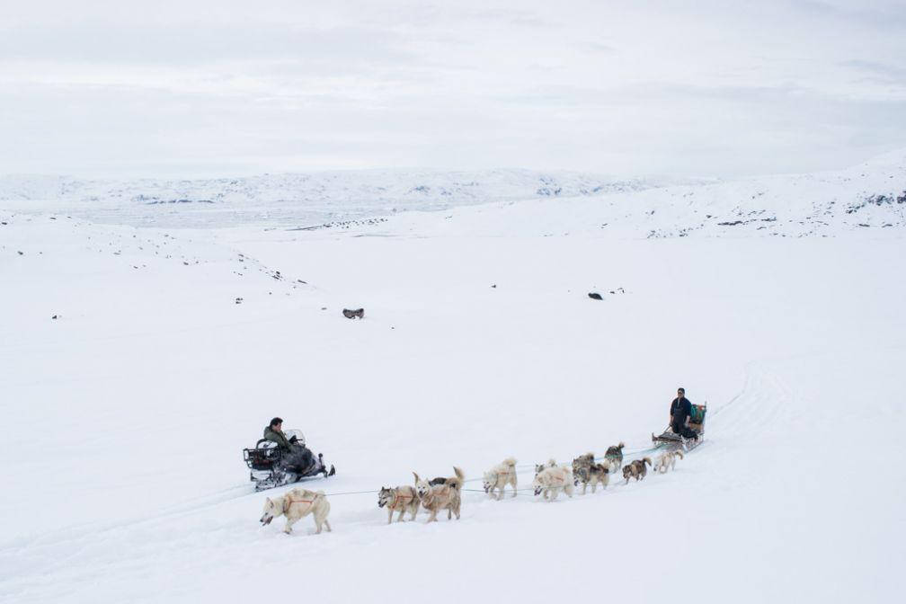 En redescendant vers Tiniteqilaaq nous croisons un traineau dont j'ai rencontré le conducteur une semaine plus tôt à la Red House.