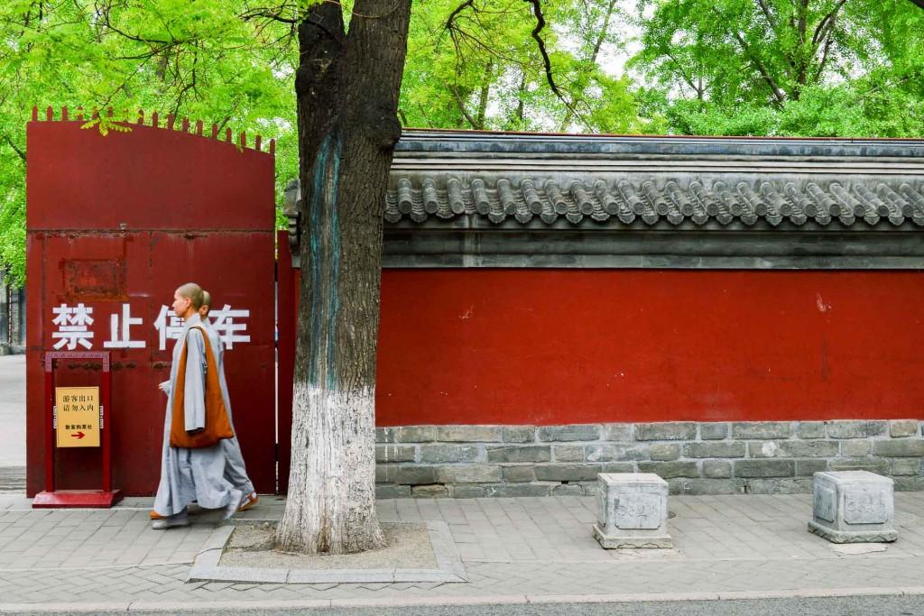 Quelle ville mieux que Pékin permet de découvrir l'histoire millénaire de la Chine ? Plongée dans la capitale tentaculaire de l'Empire du milieu à travers une sélection des meilleures expériences ou visites incontournables, et de bonnes adresses.
