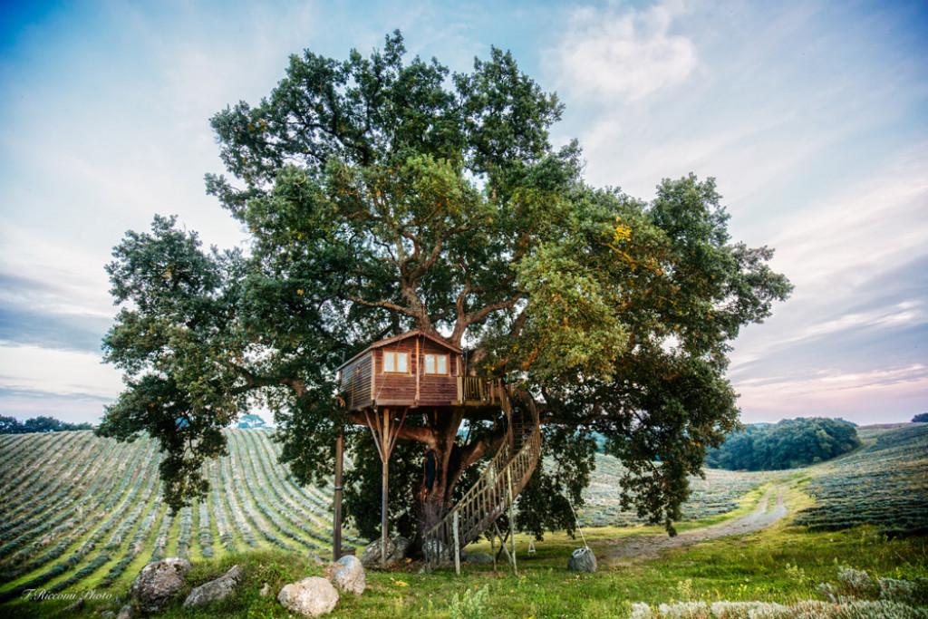 Les hôtels cabanes sont une mode désormais bien ancrée dans le paysage de l'hospitalité. Perché dans un arbre, flottant sur un lac ou accroché à flanc de montagne, notre sélection des plus beaux hôtels cabanes en France et en Europe.