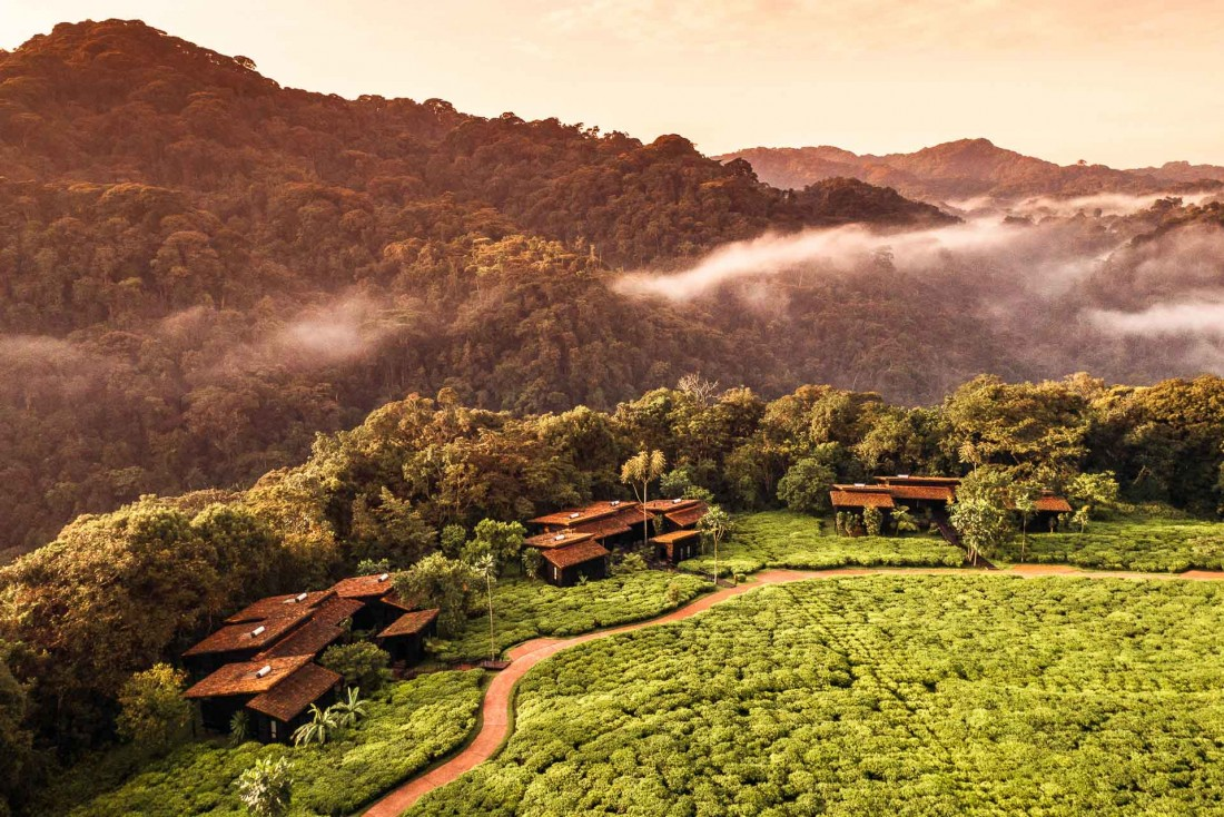 Les résidences privées du One&Only Nyungwe House sont réparties dans l'écrin verdoyant d'une plantation de thé © One&Only