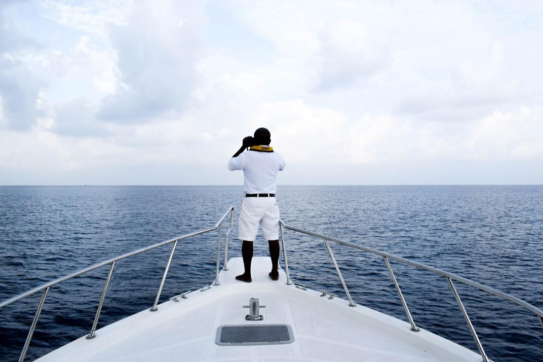 À la recherche des dauphins, lors de la