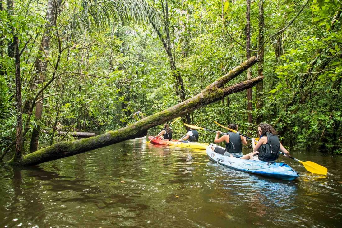 Remonter une rivière en pleine Amazonie pour une expérience unique dans l'un des endroits les plus isolés de la planète © Wladimir Kinno