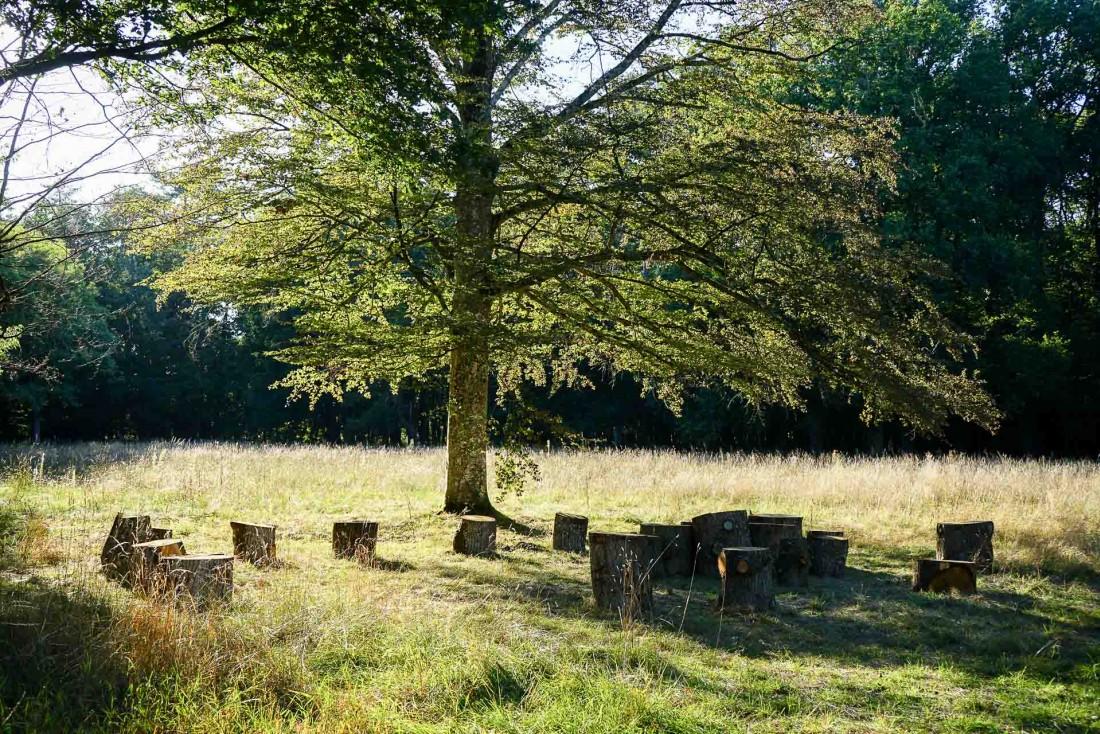 Le coin pique-nique des Sources de Cheverny © MB   YONDER.fr