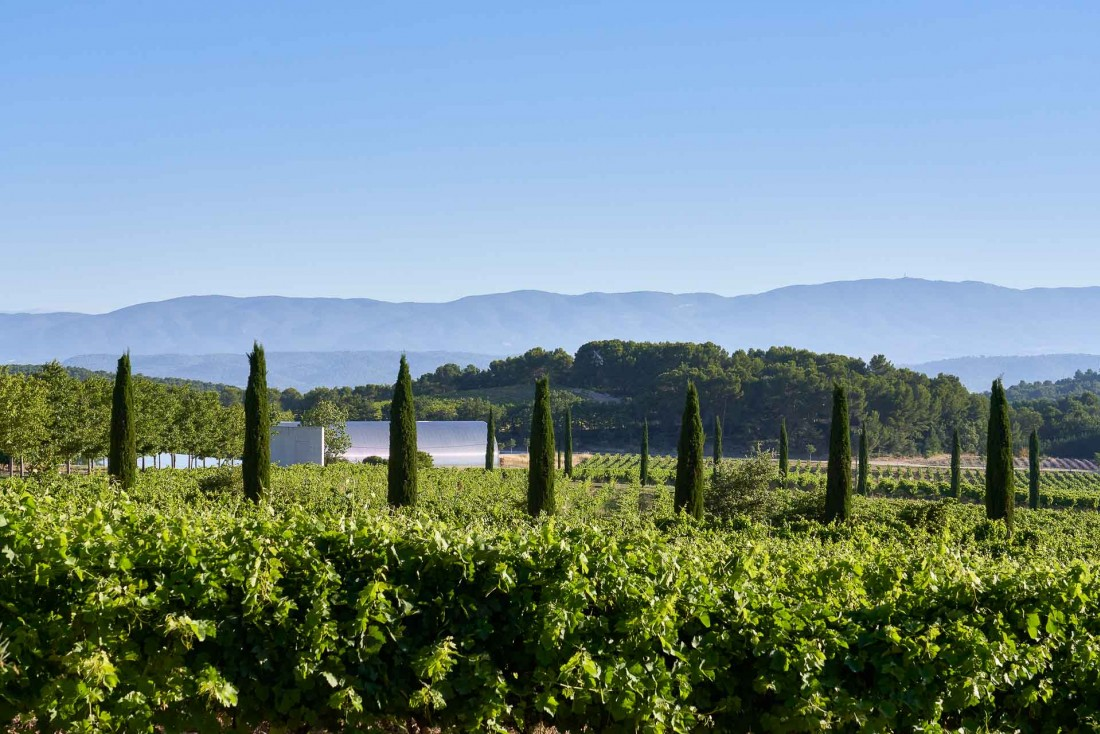Le Château La Coste entouré d'un vignoble de 125 hectares cultivés en biodynamie © Richard Haughton