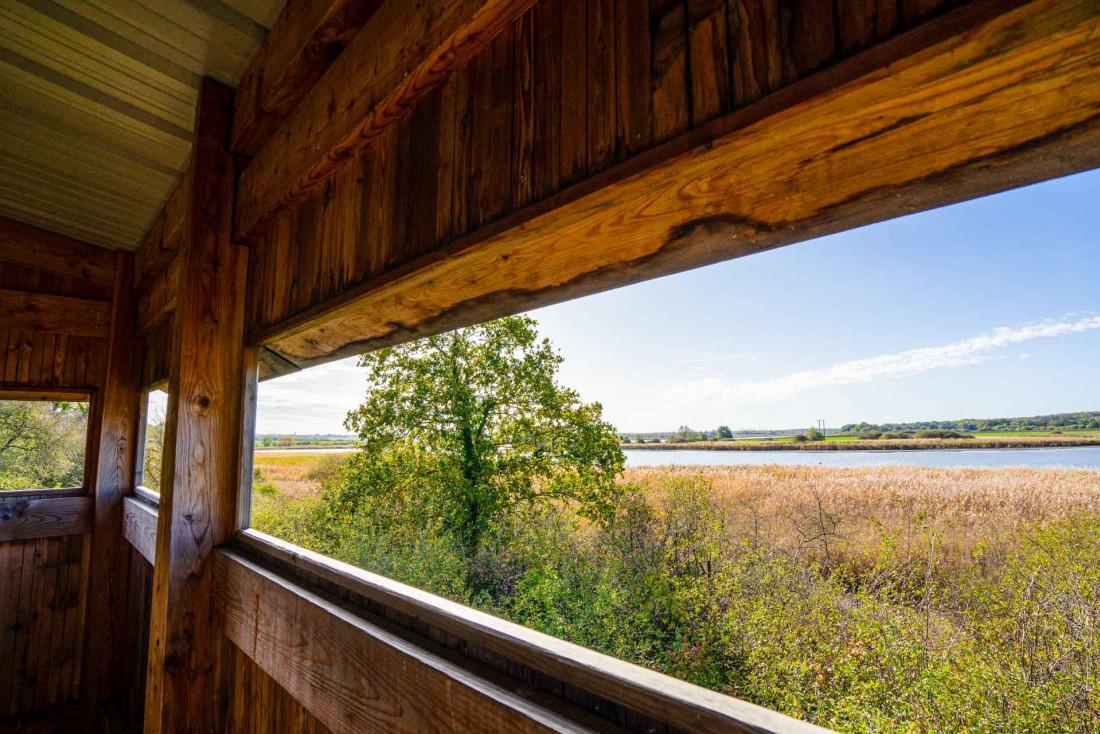 Les étangs de Lachaussée, aire protégée et paradis des oiseaux © Artipair