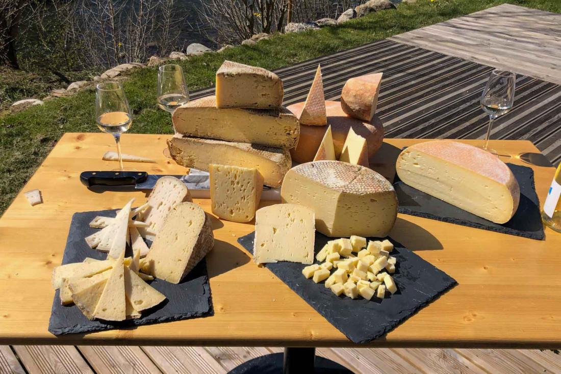 La Tomme des Pyrénées IGP au lait de vache ou de brebis © DR