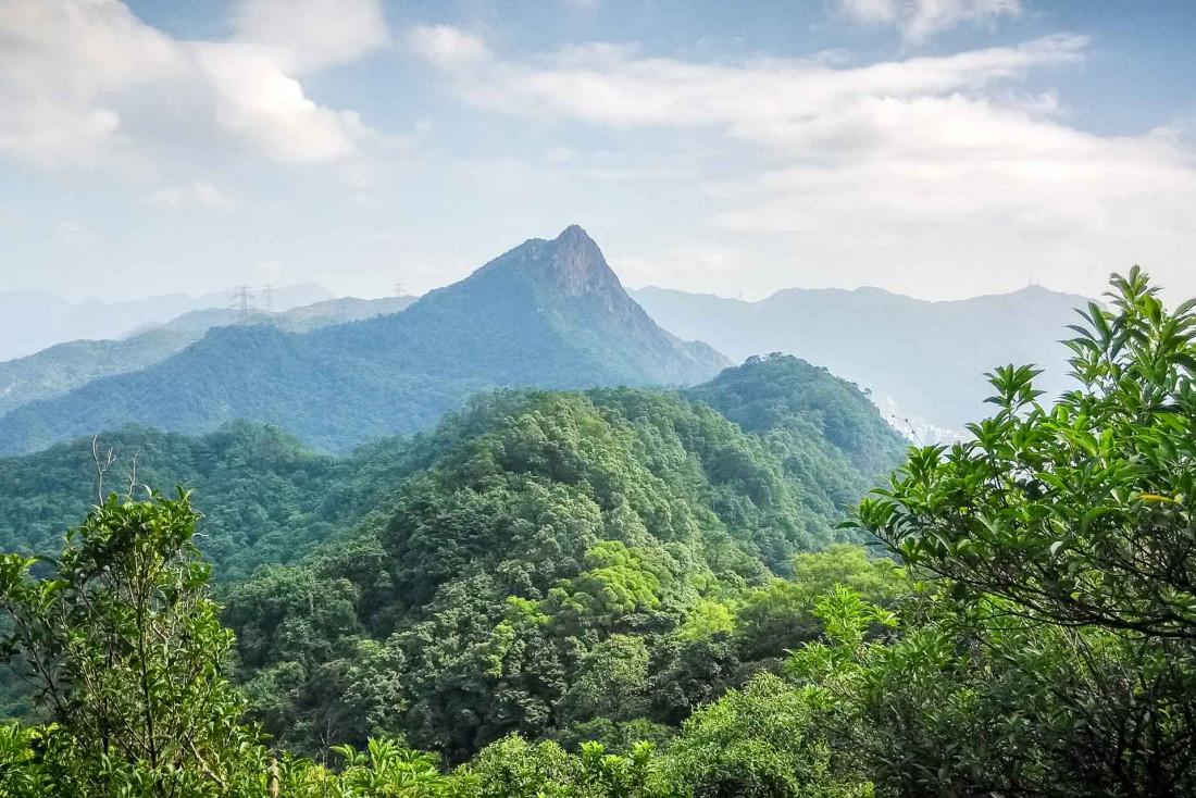 Vue sur Lion Rock depuis la Section 5 du McLehose Trail, toute proche du centre de Kowloon © Premium Collection – stock.adobe.com