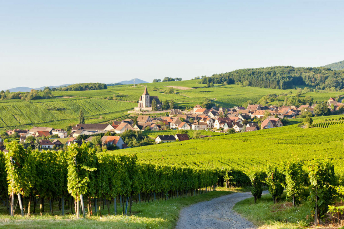 Le paysage alsacien et ses vignobles, ici le village d'Hunawihr © Istock