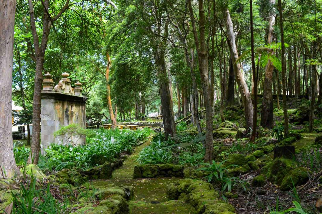 Les habitants ont l'habitude de pique-niquer et faire des barbecue en forêt sur des aires aménagées © YONDER.fr/PG