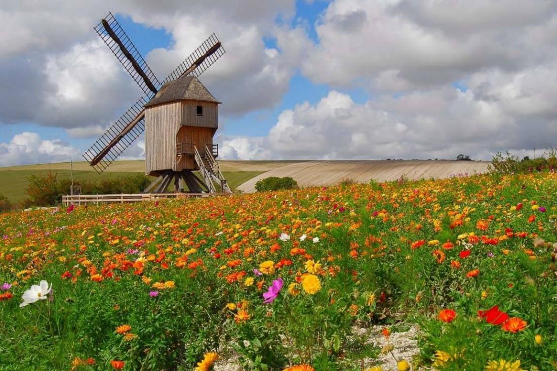 Le Moulin de Dosches, rénové sous l'impulsion de l'association des Moulins à Vent Champenois © PNRFO