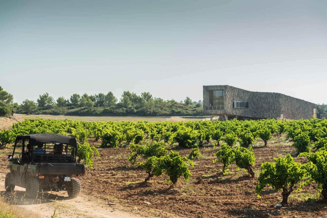 Castigno produit également du vin et possède un chais d'architecte © DR