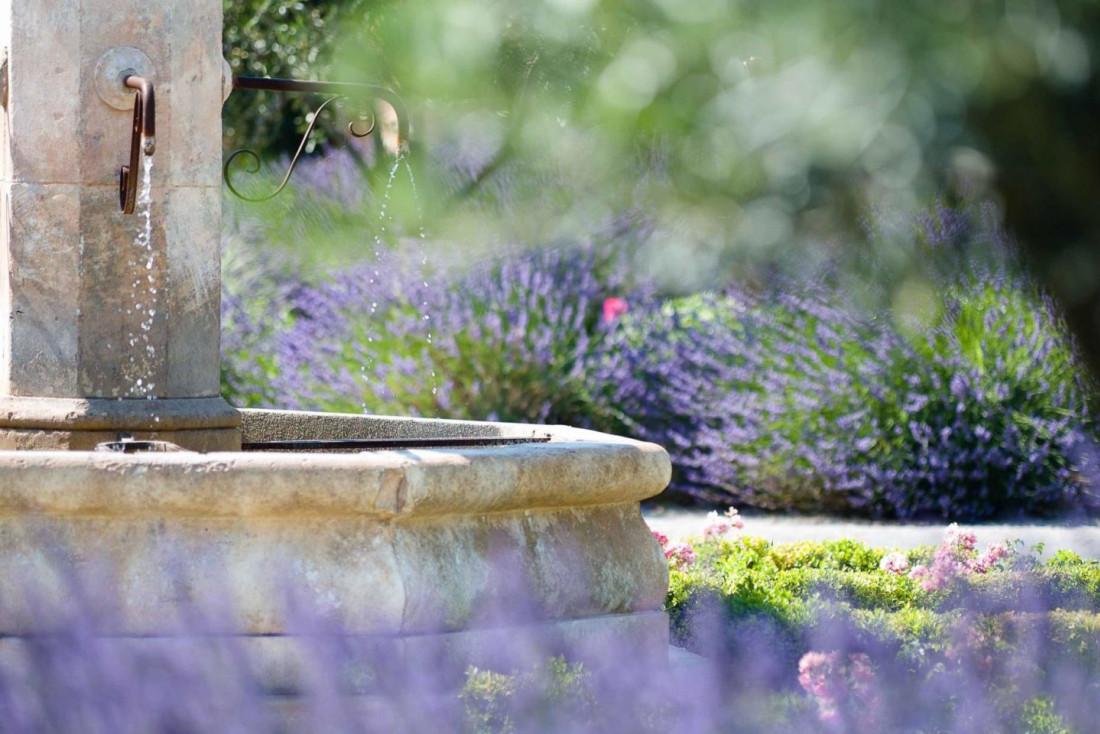 Lavande et flore provençale croissent dans le parc de douze hectares © DR