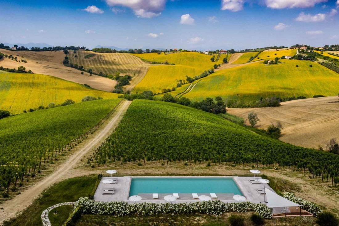 Dans les Marches en Italie, Filodivino produit son propre vin bio à partir de vieilles vignes de verdicchio © Filodivino