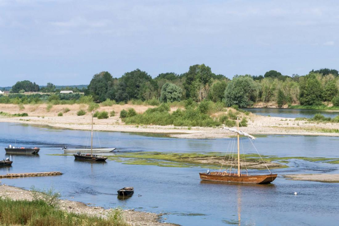 Le Loire est le dernier grand fleuve sauvage de France © Guillaume Techer