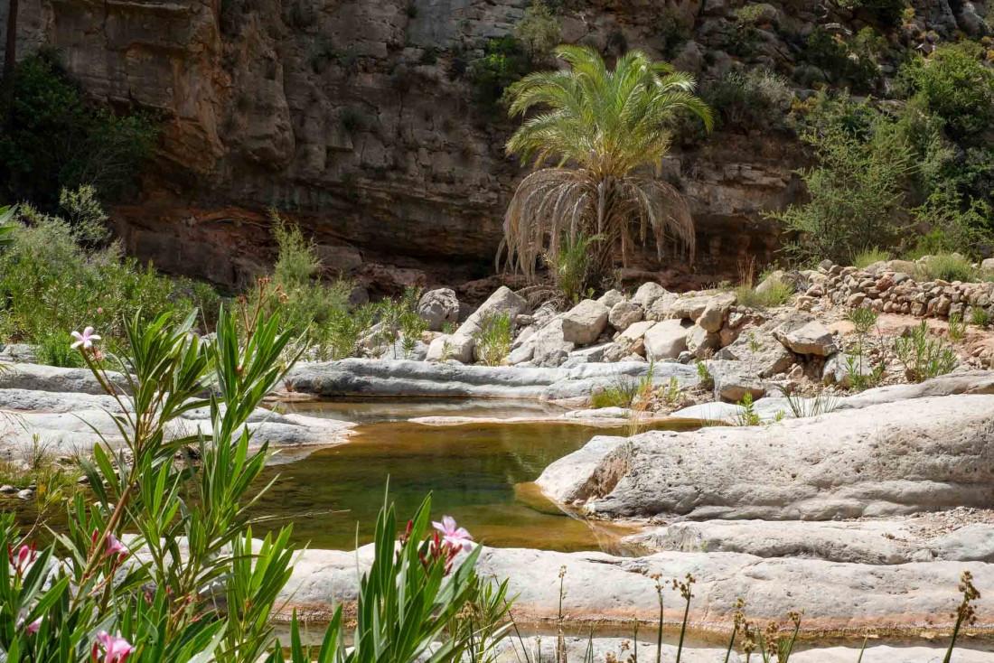 Les environs de l'hôtel et le sud du Maroc, où le désert rencontre les oasis © Jean-François Guggenheim