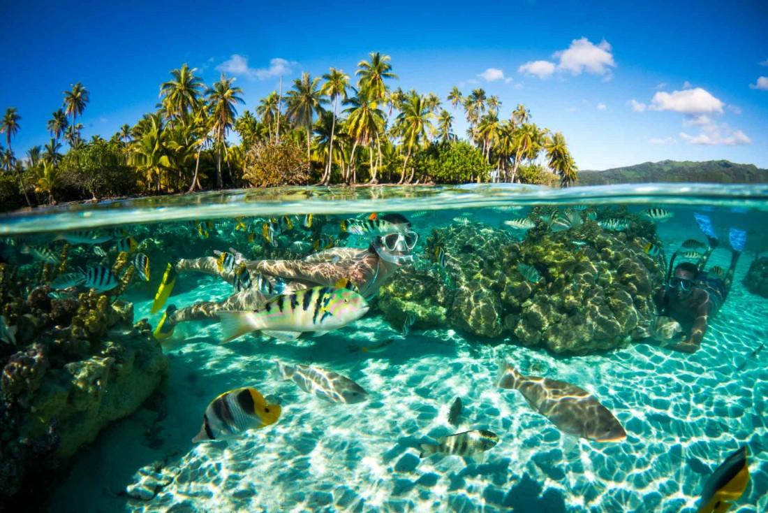 Plongée dans le lagon de Moorea © David Kirkland