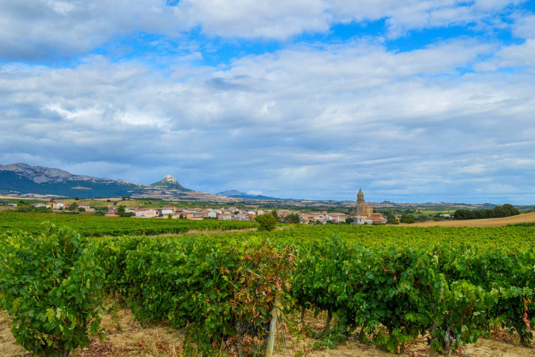 Paysage de la Rioja © Weston Mills