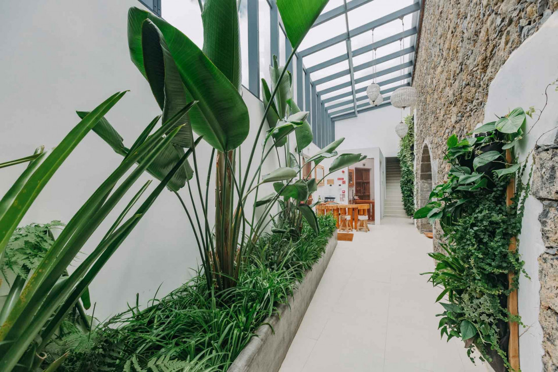Le lobby planté de White Exclusive Suites & Villas à Sã Miguel © Singular Properties