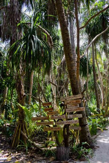 Panneaux de direction pour trouver sa route dans le dédale de chemins de l'île © YONDER.fr