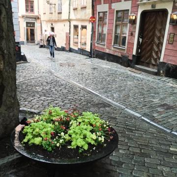 Gamla Stan, un jour de pluie © Yonder.fr