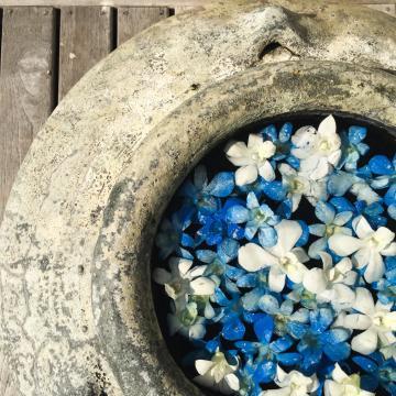 Sur la terrasse de la villa, des fleurs | © Yonder.fr