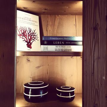 Des livres sont mis à la disposition des hôtes de l'Alpina, renforçant le côté résidentiel des lieux | © Yonder.fr