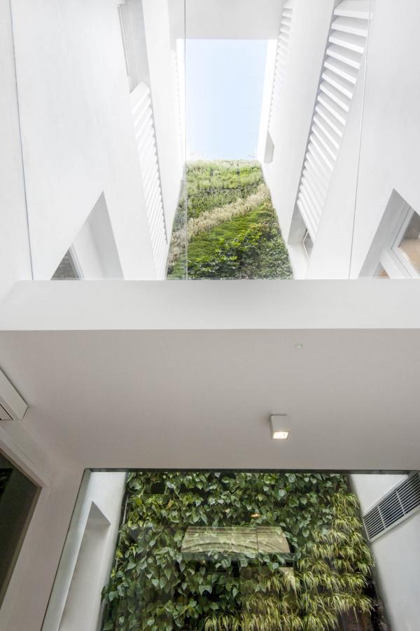 Mercer Sevilla - Le jardin vertical © Mercer Sevilla
