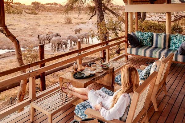 On admire depuis les terrasses les lions, les éléphants, les guépards, les hyènes et les antilopes qui se rassemblent pour s'abreuver.