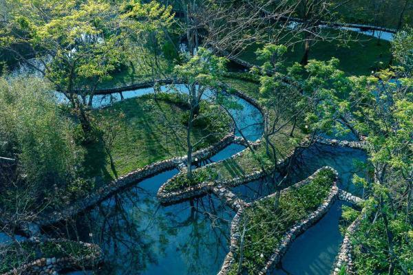 Le son de l'eau dans le jardin aquatique invite à une promenade méditative.