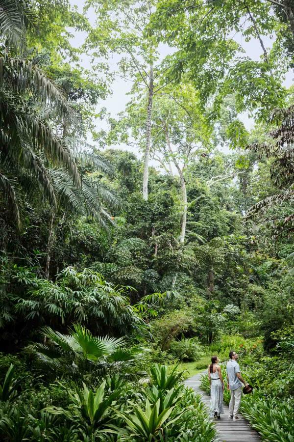 Le green fait honneur à la beauté du lieu, en remplaçant les typiques bunkers par des obstacles moins conventionnels, telle que la végétation tropicale ou des ruisseaux.