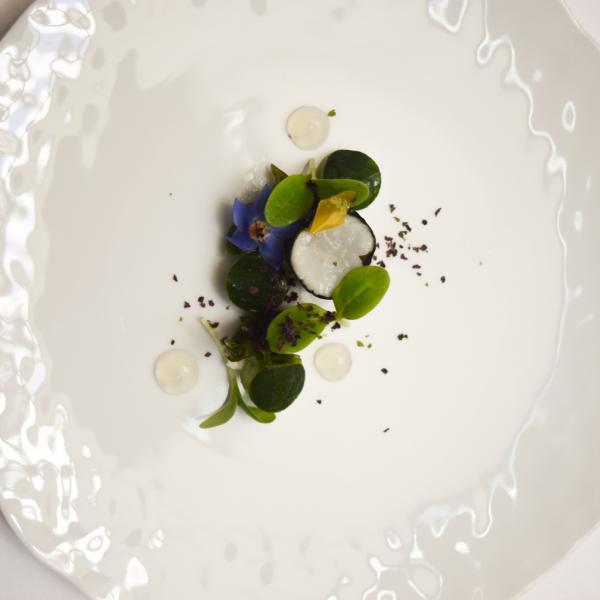 Gambas, algues, cocombre : Julien Montababut est très à l'aise dans le registre marin © Yonder.fr