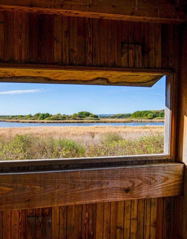 Étangs de Lachaussée — observatoire ornithologique © Artipair