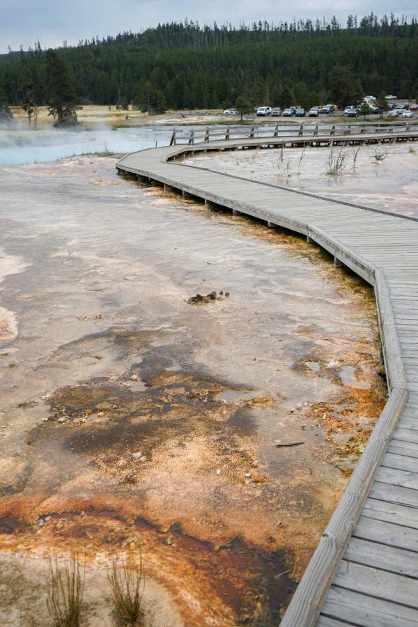 Upper Geyser Basin © YONDER.fr