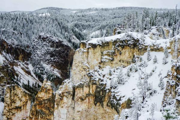 Le Grand Canyon de Yellowstone vu depuis Lookout Point (North Rim) © YONDER.fr
